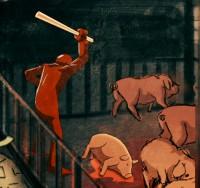 abattoir cochon 05