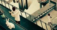 labo vivisection