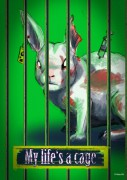 cage-photo02